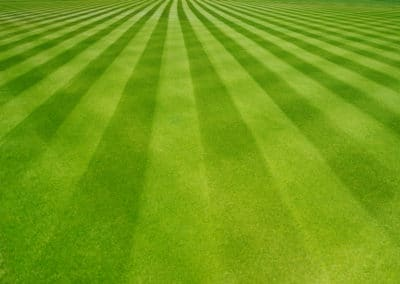 Lawn Care Striping