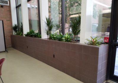 break room planters1