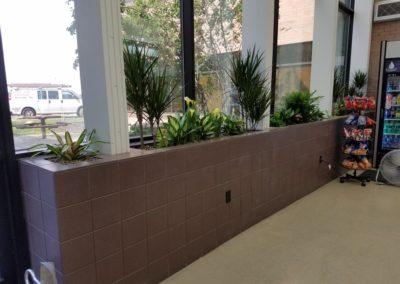 breakroom planters3