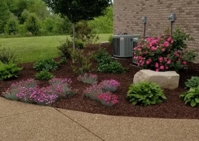 flower and mulch bed