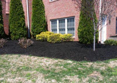 mulch install
