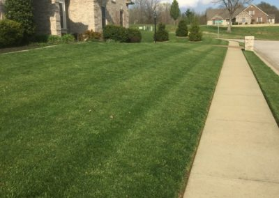 residential mowing 2