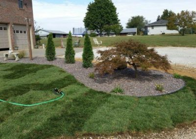 sod and landscape bed